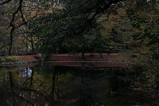 Autumns Secret by Lens Artist