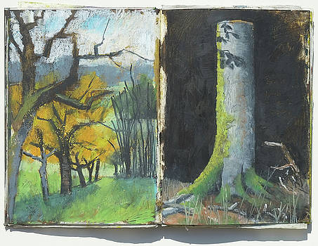 Martin Stankewitz - Autumns trees and trunk of beech tree,plein air oil psatel double sketchbook page