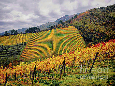 Autunno Italiano by Jennie Breeze