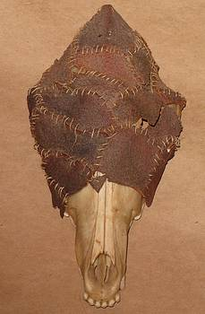Avacado Coyote Skull by Littl Ivy