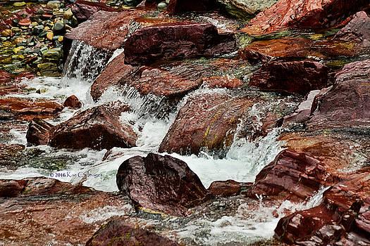 Avalanche Creek - Glacier National Park #2 by Kae Cheatham