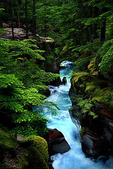 Avalanche Creek Waterfalls by David Chasey