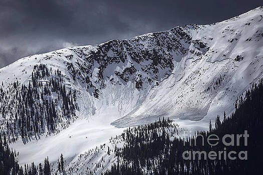 Avalanche by Joan McCool