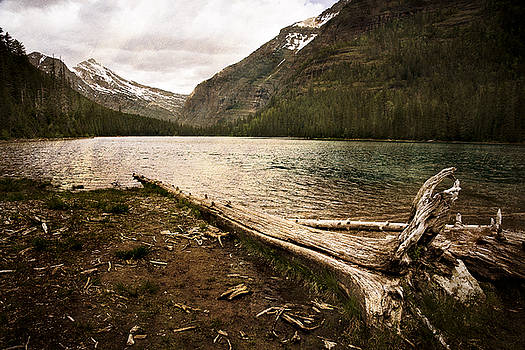 Avalanche Lake  by Mike McMurray