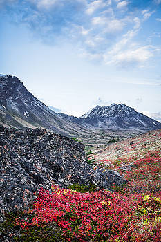 Avalanche Mountain in Autumn 1 by Tim Newton