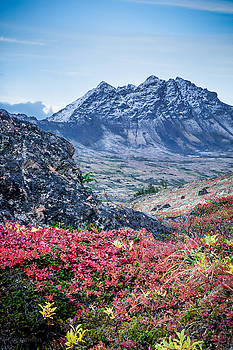Avalanche Mountain in Autumn 2 by Tim Newton