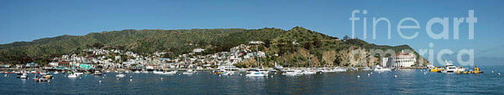 Avalon Panorama by Jim Chamberlain