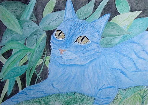Avatar Cat by Cybele Chaves