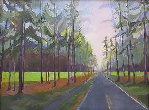 Avenue of the Pines-spring by Terri Messinger