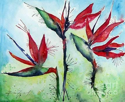 Aves del Paraiso by ZarZas Art