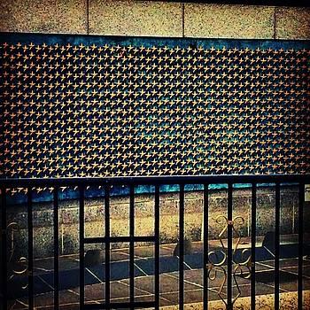#aviary #instaprints #addastarforbrody by Jamie Brown