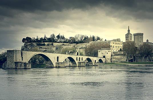 Avignon cityscape by Mickael PLICHARD
