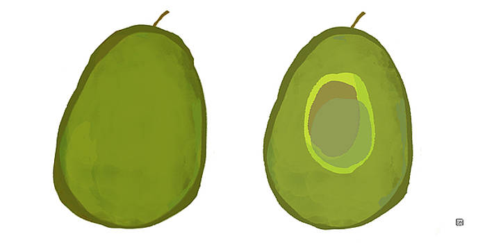 Avocados by Lisa Weedn