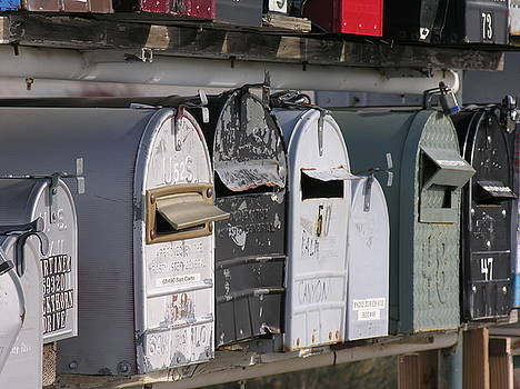 Awaiting Mail also by Diane Greco-Lesser