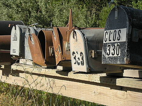 Awaiting Mail  by Diane Greco-Lesser
