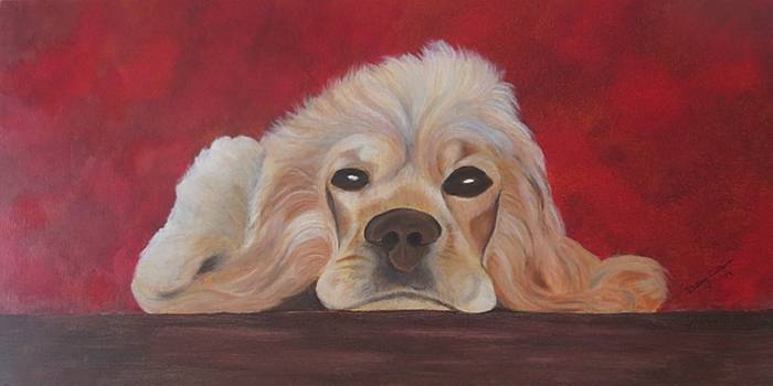 Awaiting Spaniel by Betsy Cullen