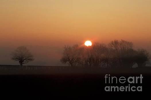 Awake  by Gary Bridger