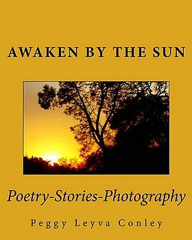 Awaken by the Sun by Peggy Leyva Conley