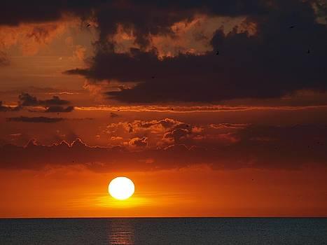 Island Sunset  by Jeffrey Akerson