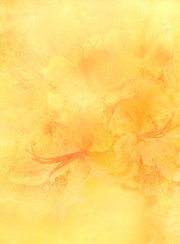 Azalea Impressions by Catherine Alfidi