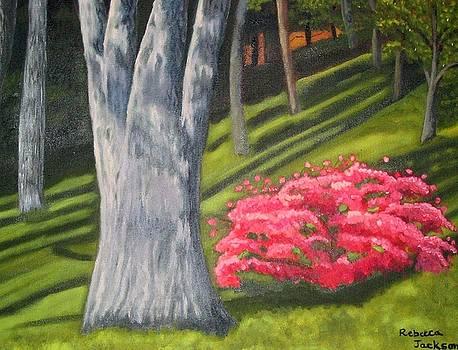 Azaleas in the woods by Rebecca Jackson