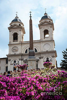 Azaleas on the Spanish Steps in Rome by Brenda Kean