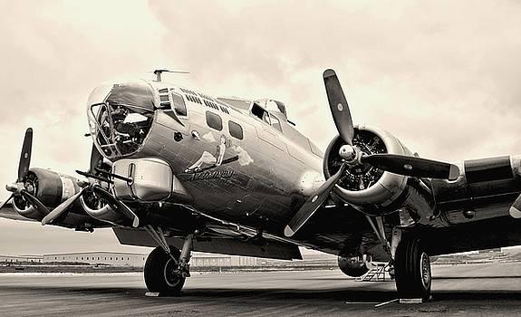 B-17 Bomber Airplane by Amy McDaniel