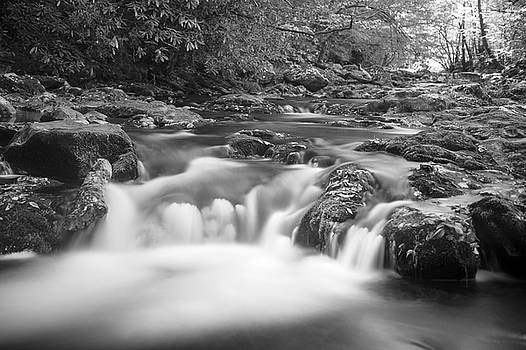 B/W Falling Water by Cathie Crow