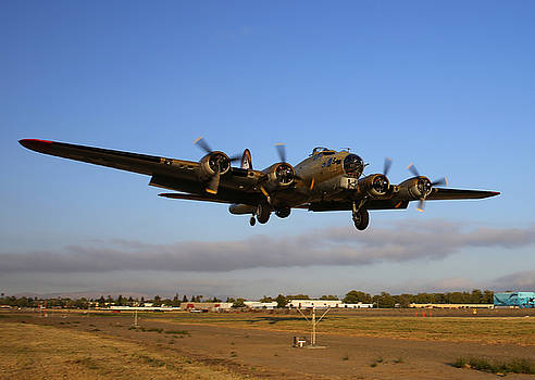 John King - B17 Flying Fortress on Short Approach at Livermore Airport