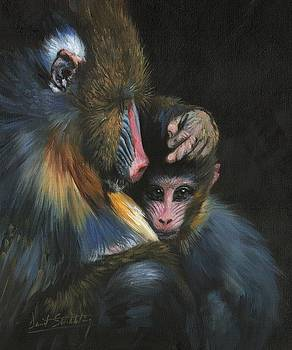 Baboon Mother and Baby by David Stribbling