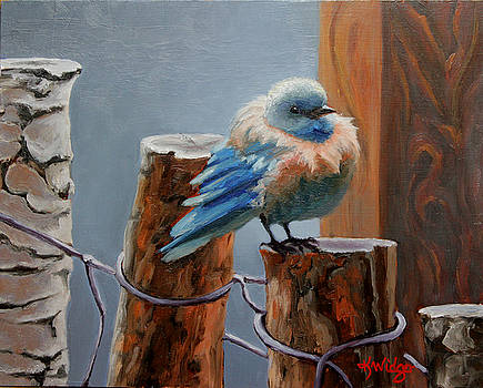 Baby Blue by Katy Widger