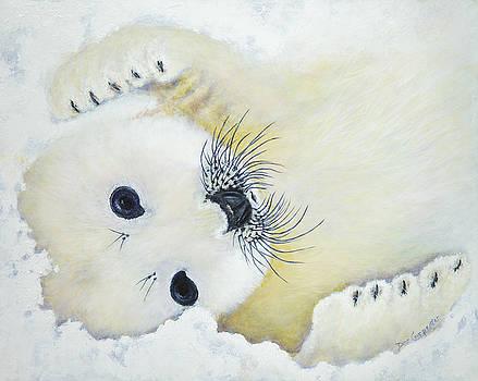 Dee Carpenter - Baby Cakes