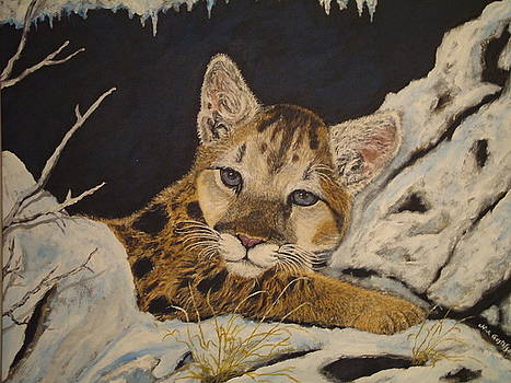 Nick Gustafson - baby cougar in snow