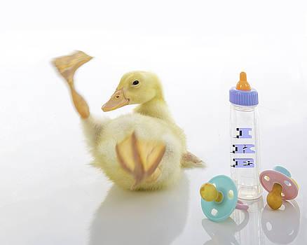 Baby Duck Custom Name by Jodi Jacobson