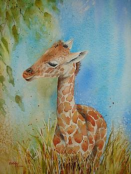 Baby Giraffe by Bobbi Price
