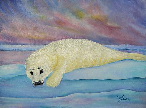 Dee Carpenter - Baby Harp Seal