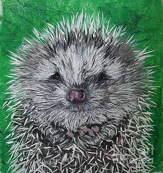 Baby Hedghog by Linda Eversole