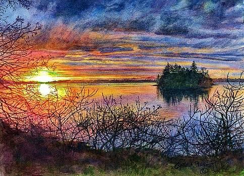 Baby Island Glory by Cynthia Pride