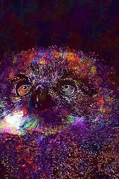 Baby Owl Eyes Cute Bird  by PixBreak Art