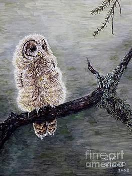 Baby Owl by Judy Kirouac