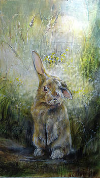 Baby Rabbit by Penny Golledge