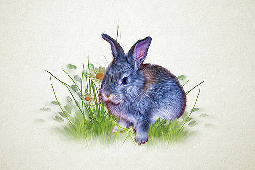 Baby Rabbit by Tatiana Tyumeneva