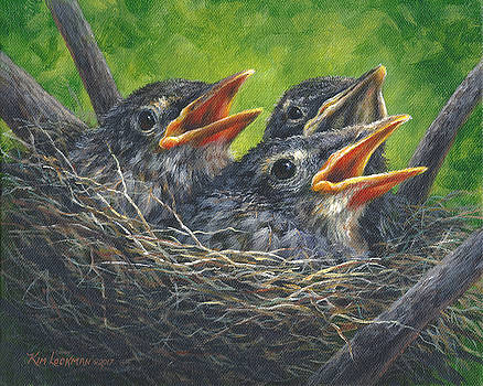 Baby Robins by Kim Lockman