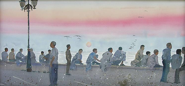 Bachelors and Birds by Martin Giesen