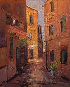 Back alley in Provence France by R W Goetting
