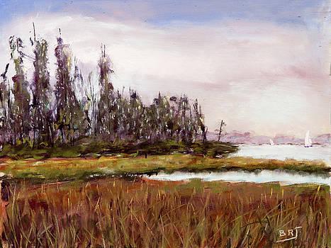 Back-Bay Marsh by Barry Jones