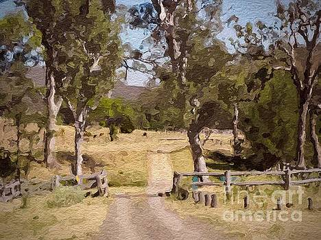 Back Country Farm Track by Clive Littin