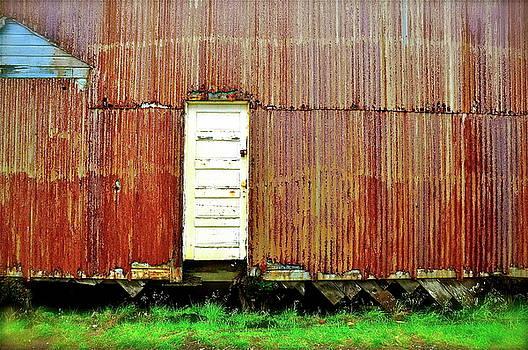 Back Door by Mark Lemon