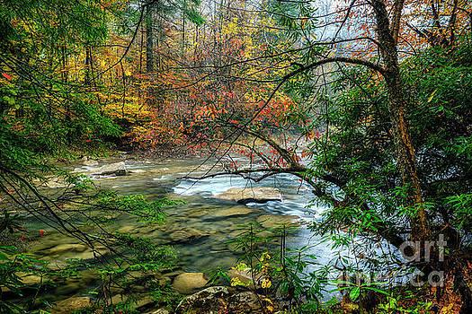 Back Fork of Elk Autumn by Thomas R Fletcher