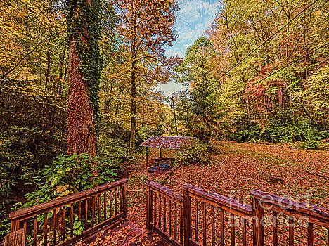 Back Porch in Autumn by David Lane